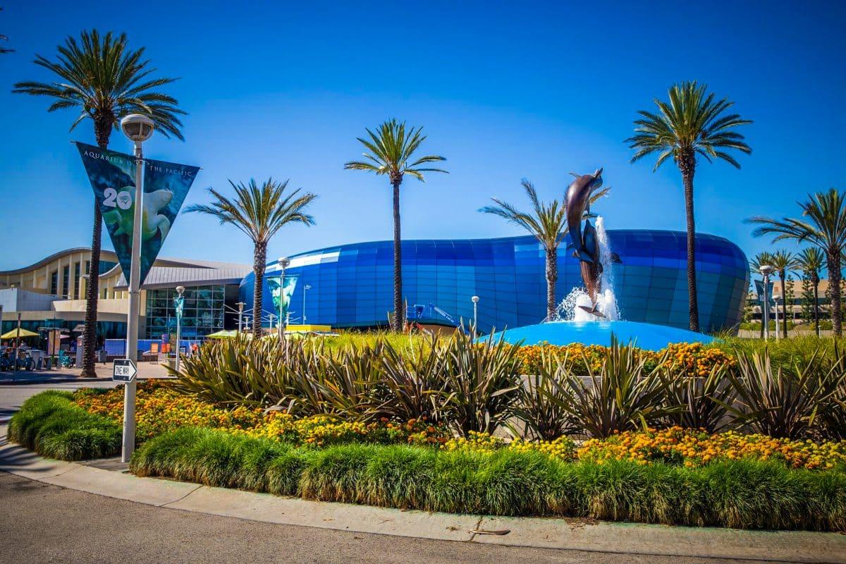 Aquarium To Reopen Friday Bars