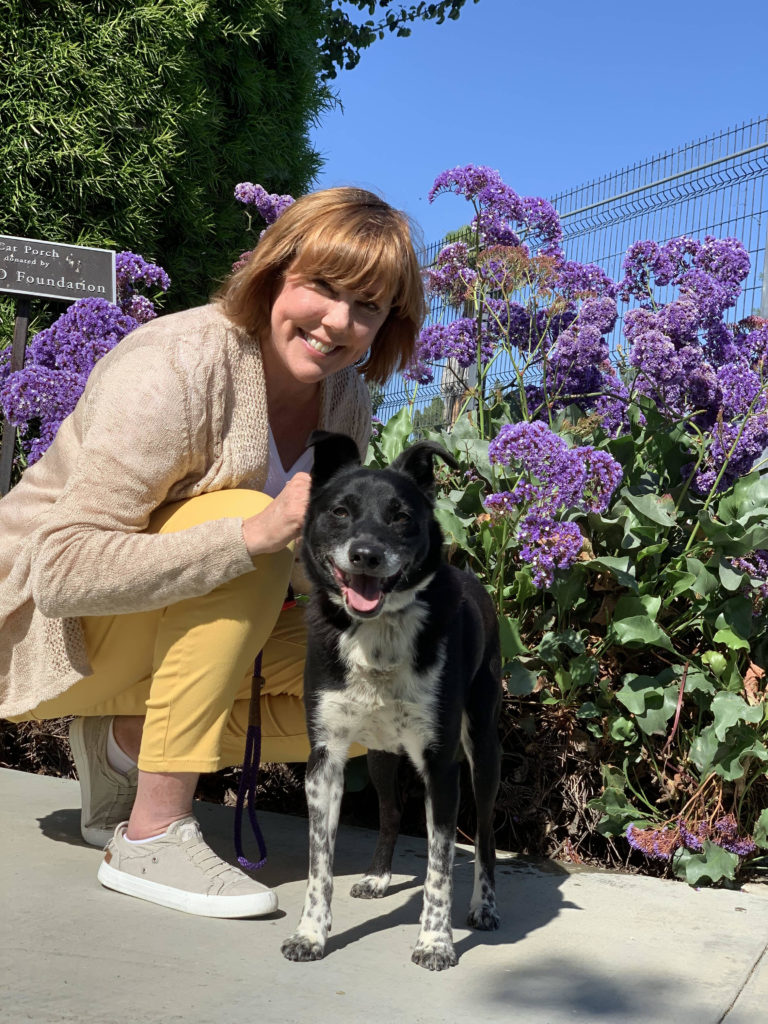 Woman with short blonde hair and wearing a light-colored shirt and pants squats next to a black-and-white cattle dog mix in a background of flowering bushes.