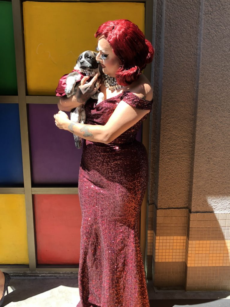 Drag performer with bright-red hair and a long, red sequinned dress holds bulldog mix