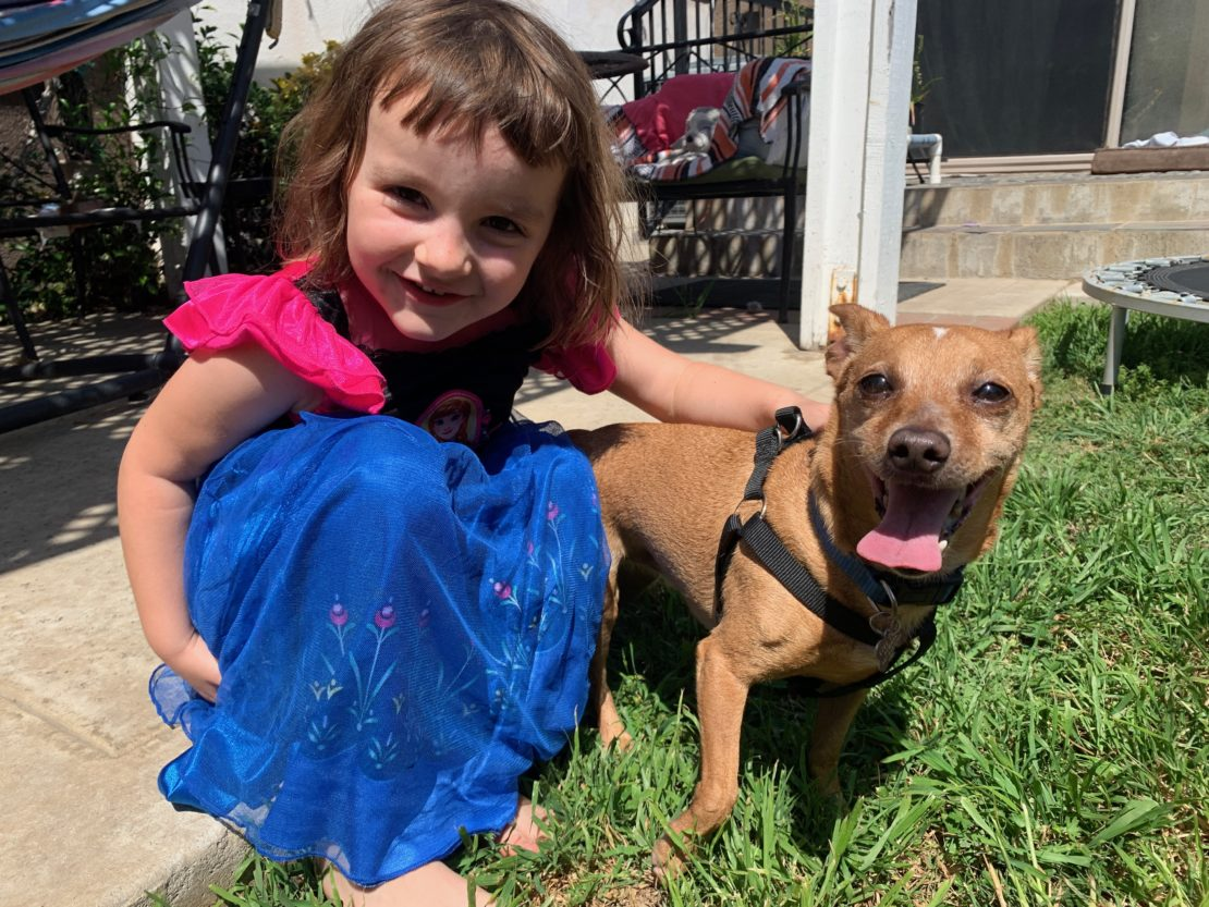 Smiling little girl with brown bangs, wearing a bright-pink top and bright-blue skirt, kneeling in grass,pats happy little brown dog, who's smiling at the camera with his mouth open.