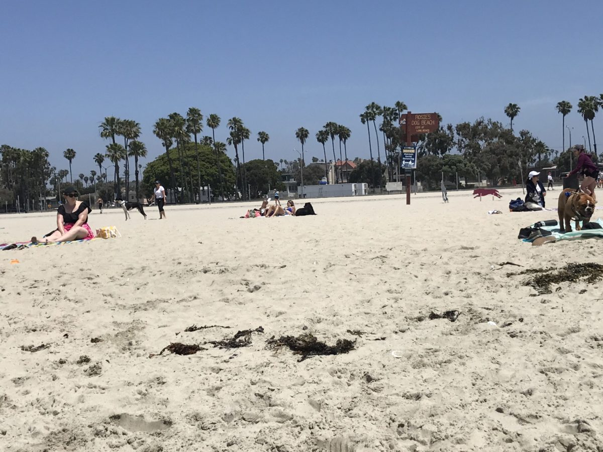 Long Beach Los Angeles County To Close