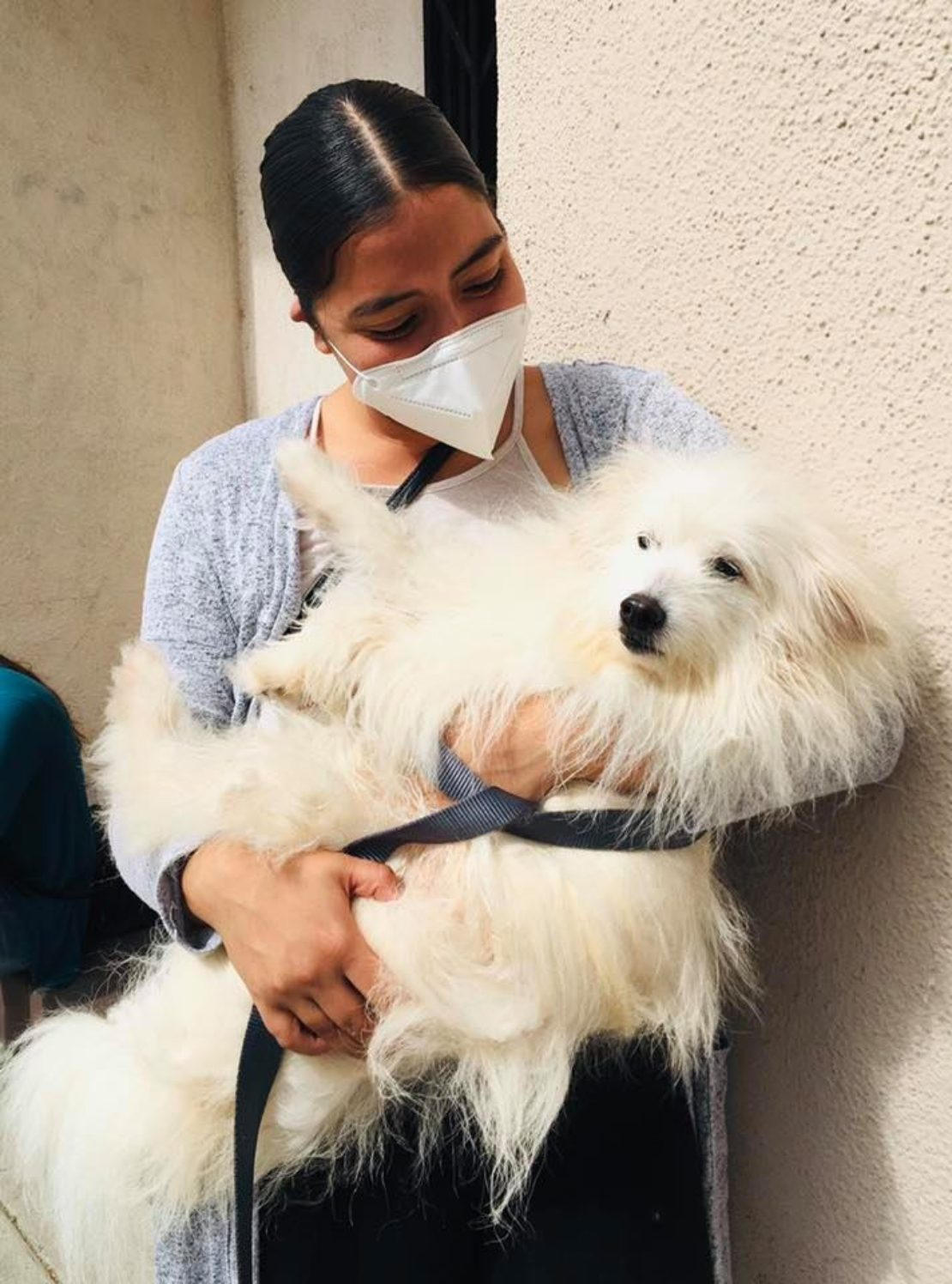Young woman wearing mask holds fluffy, white dog.