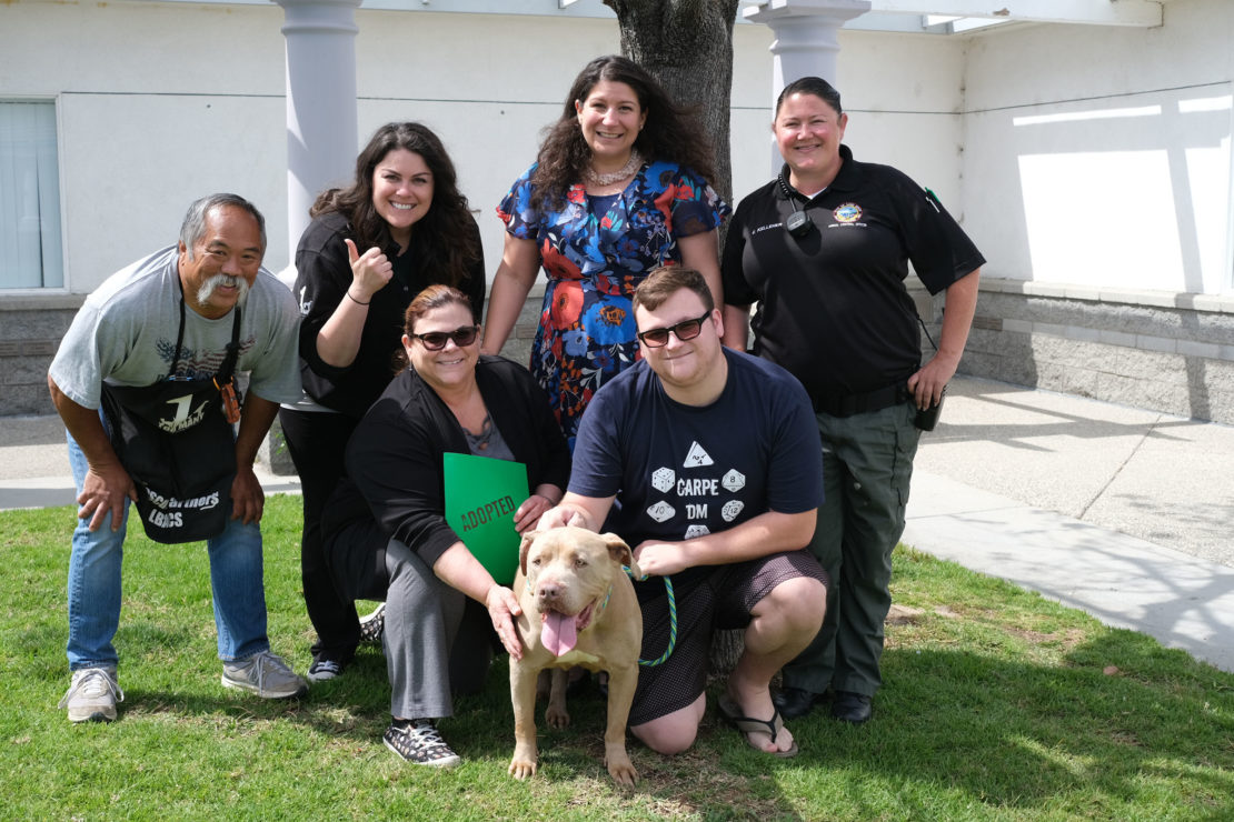 a group of people, some shelter volunteers and staff, stand in front of a man and a woman who have just adopted a tan pit bull