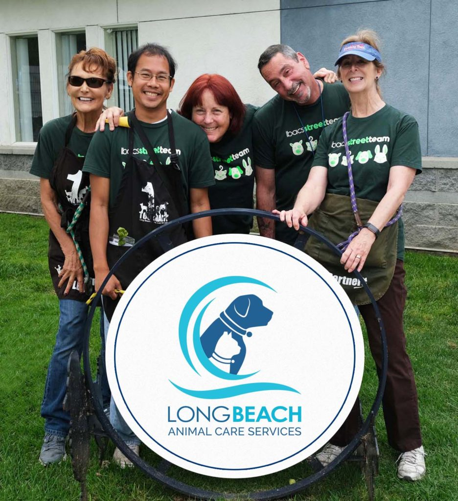 A group of five people in green T-shirts stand around a sign that says Long Beach Animal care Services. on green grass. There's a dog and also a cat with a tipped ear and a blue wave around them.
