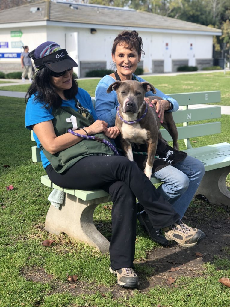Two women, one in a cap and one bareheaded, sit on a bench in a grassy area. With them is a gray pit bull with a white chest.