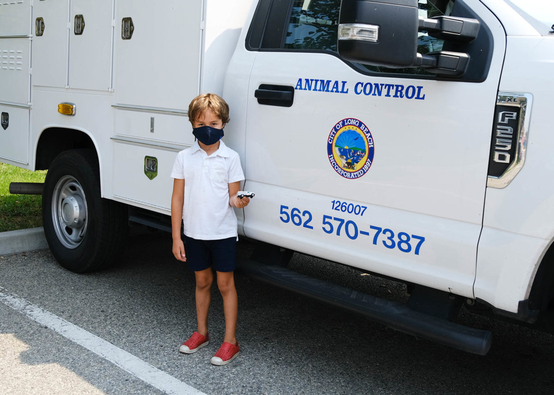 small boy with white shirt and black shorts and mask stands before a white animal shelter truck.
