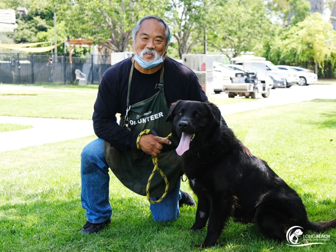 Large black Labrador mix sits next to a kneeling man with a mask, in a grassy area