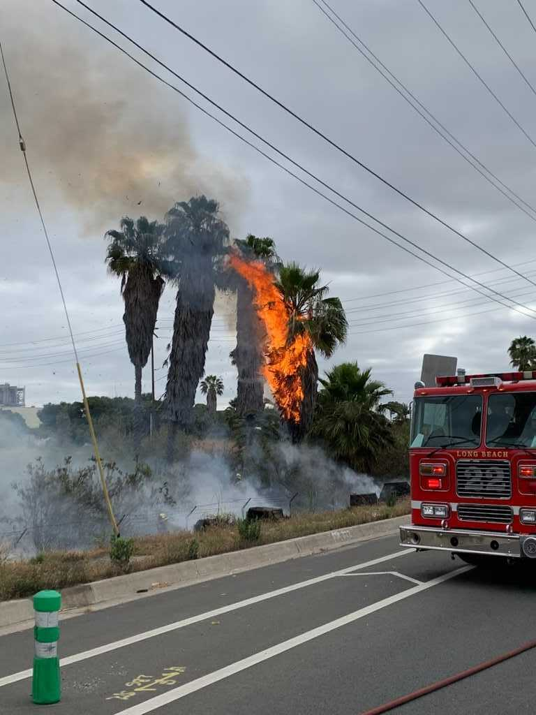 Firefighters take down half-acre brush fire in East Long Beach