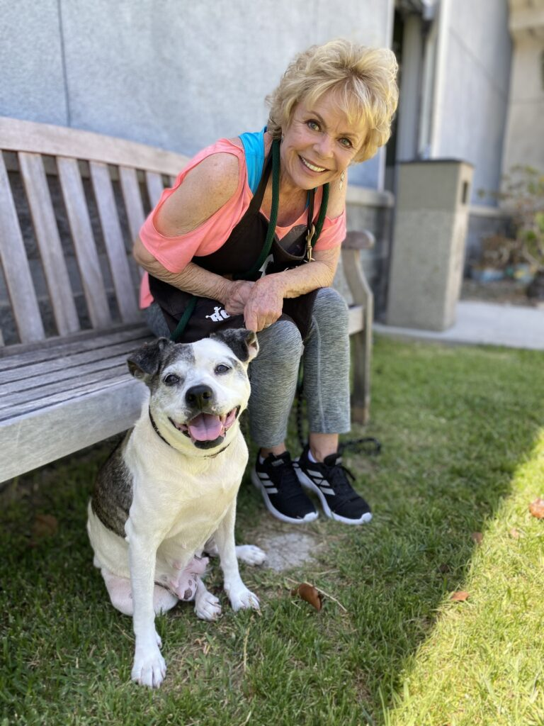 Blond woman in pink shirt and gray pants sits on bench next to white pit bull with brown ears and patch on back, who sits on grass.